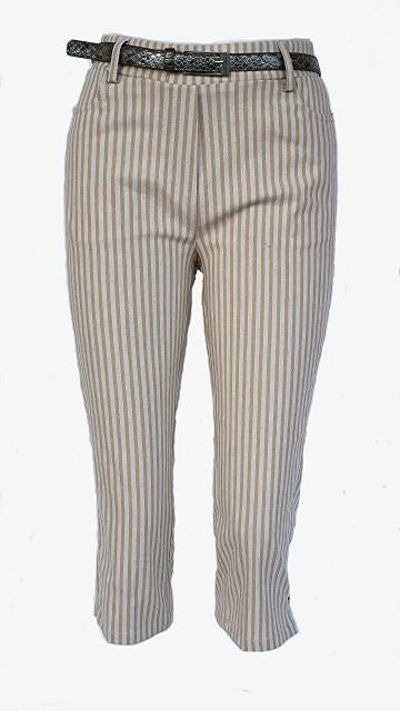 Brenda-107 Bamboo stripes